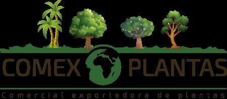 Comex Plantas